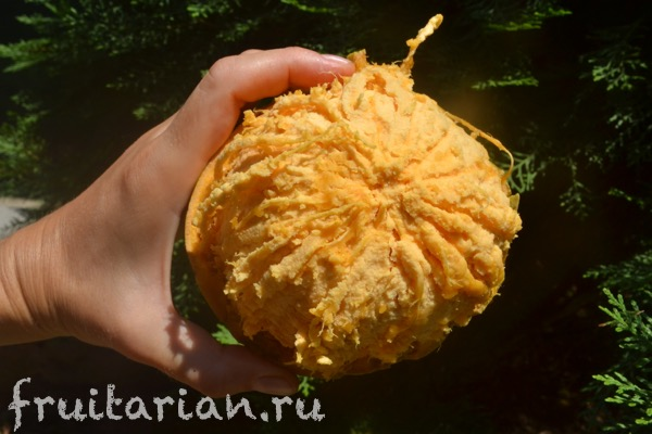 bael-stone-apple-04