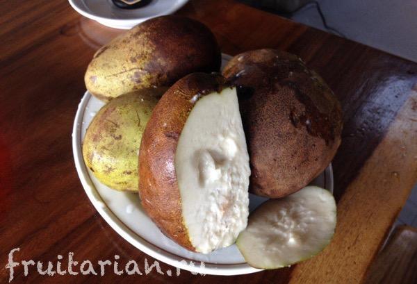 white-mango-wani-1