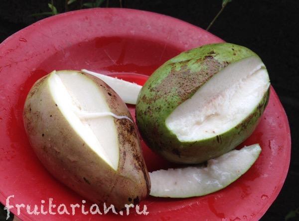 white-mango-wani-3